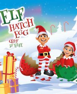 Elf Fantasy Hatch Egg